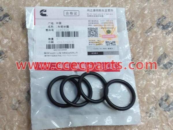 CCEC 109080 O-Ring Seal
