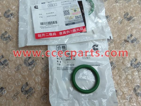 CCEC 3892095 O-Ring Seal