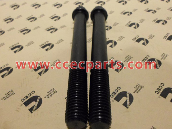 cceco 205565 Vis carter de volant moteur