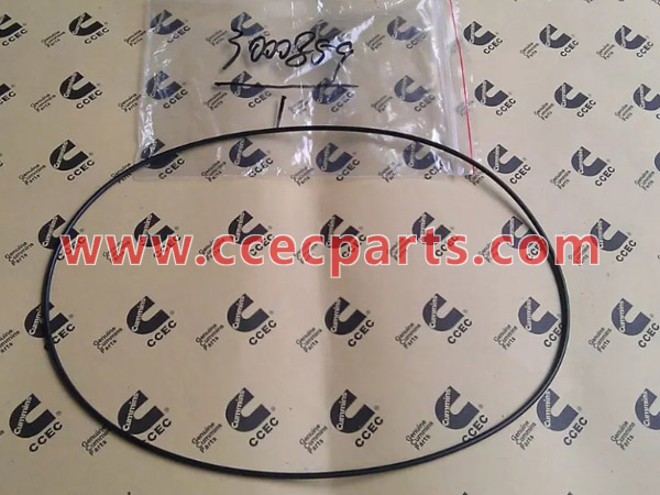 cceco 3000859 K19 Fan Hub O-Ring Seal